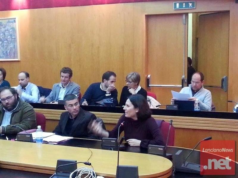 L'europarlamentare Daniela Aiuto